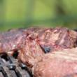 steak-353115_1280