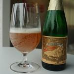 ベルギー産おすすめフルーツビールあります